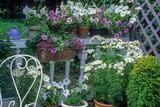 Fototapeta Kosmos - Jardinières sur un balcon © PIXATERRA