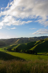 A typic new zealand landscape with green mountains during the sunset © Candice