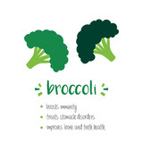 Benefits of broccoli, vector cartoon illustration isolated on white background. - 251172567