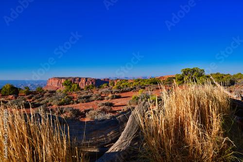 obraz PCV USA Westküste Nationalpark