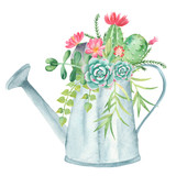 Watercolor composition with succulents, cacti and watering can. Illustration on white background for cards, invitations, weddings, cards, business cards.