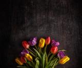 Fototapeta Tulipany - Vibrant colorful tulips © Grafvision