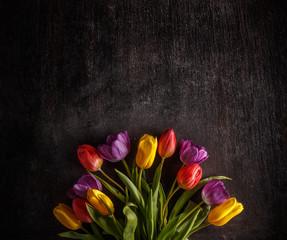 Vibrant colorful tulips © Grafvision