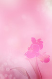 pink orchid on light pink blurred background banner. Copy space