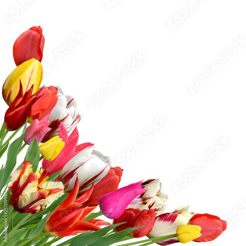 Tulpenbouquet