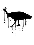 graffiti tropfen klecks farbe spritzer vogel silhouette umriss schatten pfau fasan federn groß männlich schön hübsch augen zoo wildtier comic cartoon clipart design