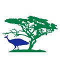 baum savanne afrika vogel silhouette umriss schatten pfau fasan federn groß männlich schön hübsch augen zoo wildtier comic cartoon clipart design