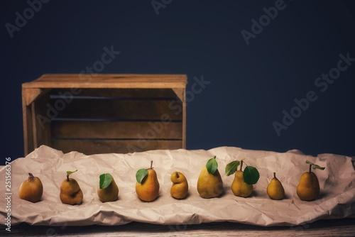 canvas print picture Reife Birnen Früchte auf Packpapier vor dunklem Hintergrund. Ökologische Früchte in natürlichen Formen, schief und krumm oder gerade und schön.