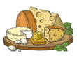 Plate of cheese color sketch engraving vector illustration. Scratch board style imitation. Hand drawn image.