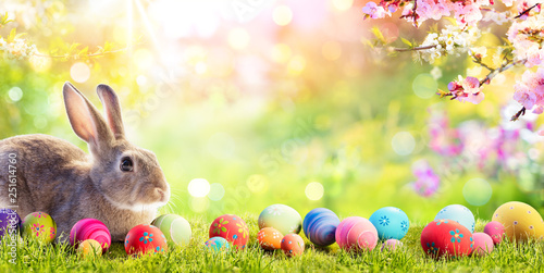 Leinwanddruck Bild Adorable Bunny With Easter Eggs In Flowery Meadow