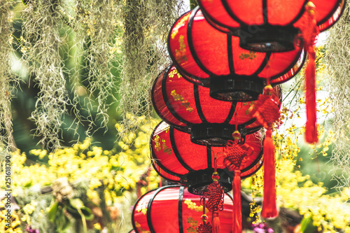 Chinese lunar new year red lantern decorations