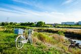 Japan Tama river bank Tokyo suburban natural landscape with bicycle