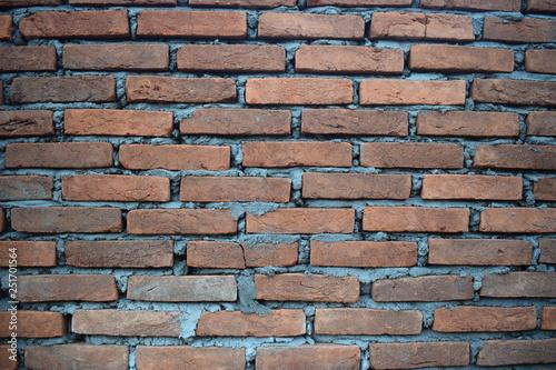 Wall Brick Background - 251701564