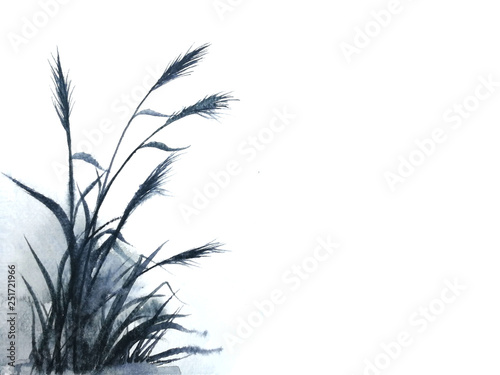 watercolor reeds or grass ink Traditional oriental. asia art style.isolated on a white background	 © atichat