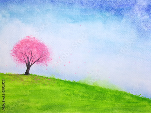 watercolor landscape hill and cherry blossom or sakura tree stand alone in green meadow field with blue sky.hand drawn on paper.	 © atichat