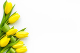 Fototapeta Tulipany - Spring composition. Delicate yellow tulips on white background top view space for text border © 9dreamstudio