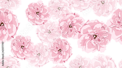 Watercolor Roses, Floral Seamless Pattern. - 251777117
