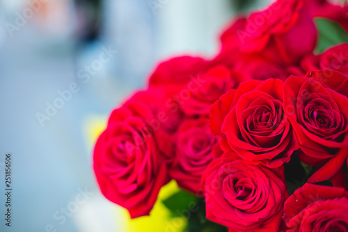 A bouquet of fresh red roses close up © Semenova Jenny