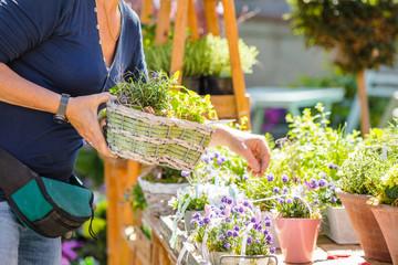 Gartenarbeit und blumen Verkauf