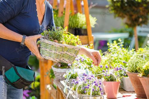 Gartenarbeit und blumen Verkauf - 251866710