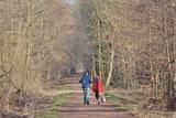 Fototapeta Las - Des personnes qui se promènent en forêt © aquaphoto