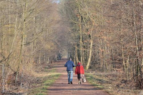 Des personnes qui se promènent en forêt