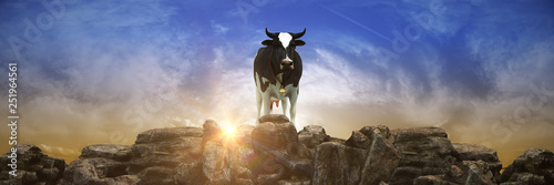 Cow at sunset. 3d rendering