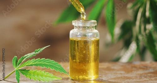 Leinwandbild Motiv Macro close up of droplet dosing a biological and ecological hemp plant herbal pharmaceutical cbd oil from a jar.