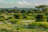 Fototapeta Sawanna - View of the trails and savannah of Samburu © Demande Philippe