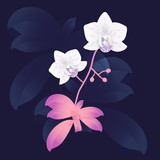 Vector orchid branch, hand drawn floral illustration
