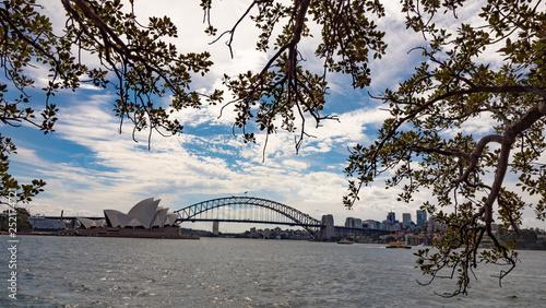 obraz lub plakat Sydney Harbour Bride and Opera House