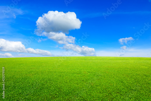 obraz PCV Green grass and blue sky with white clouds