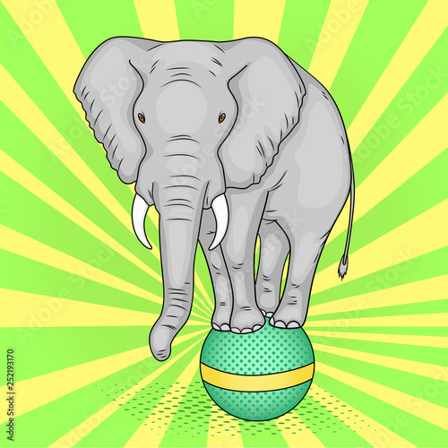 Pop art background, green sun rays. A circus elephant stands on a ball. The imitation of comic style. Raster © toricheks