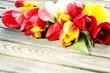 Leinwanddruck Bild - Ostern, Frühling, Tulpen, auf Holz, Textraum, copy space