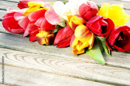 Leinwanddruck Bild Ostern, Frühling, Tulpen, auf Holz, Textraum, copy space