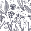 Spring background with flowers drawings. Tulips, crocus, freesia, iris, narcissus, snowdrops, cyclamen. Floral seamless pattern. Hand drawn forest and garden plants illustration. Vintage design.  - 252268737