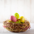 Easter composition with Easter eggs in nest.