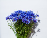 Close-up bouquet of beautiful blue cornflowers on white background