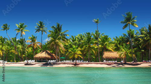 Fototapeten Strand Panoramic view of Exotic Palm trees on the tropical beach.