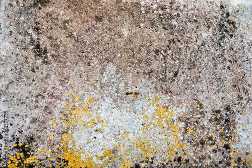 Graphic texture stone - 252377735