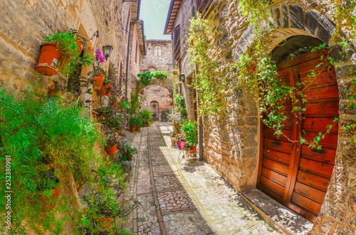 Spello (Perugia), the awesome medieval town in Umbria region, central Italy, during the floral competition after the famous Spello's intfiorate. - 252380981