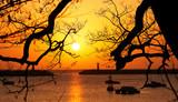 Fototapeta Na ścianę - 등대 사이로 떠오르는 태양 © sephoto