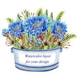 Watercolor pot with cornflowers and floral elements on a white background.