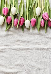 Festive background with fresh tulips. Easter card with fresh spring flowers
