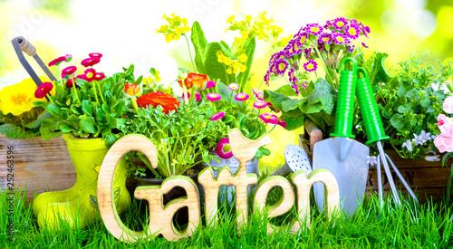 obraz PCV Garten Hintergrund Banner Panorama