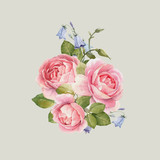 Watercolor rose vector omposition - 252476172