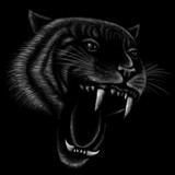 The Vector logo tiger for tattoo or T-shirt design or outwear.  Hunting style tigers cat background.