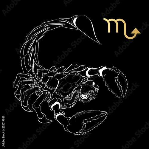Zodiac sign Scorpio isolated on black background. Vector. © veye
