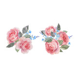 Watercolor rose vector compositions - 252780558