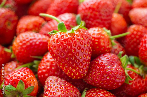Fresh organic red ripe Strawberry fruit background closeup - 252788993